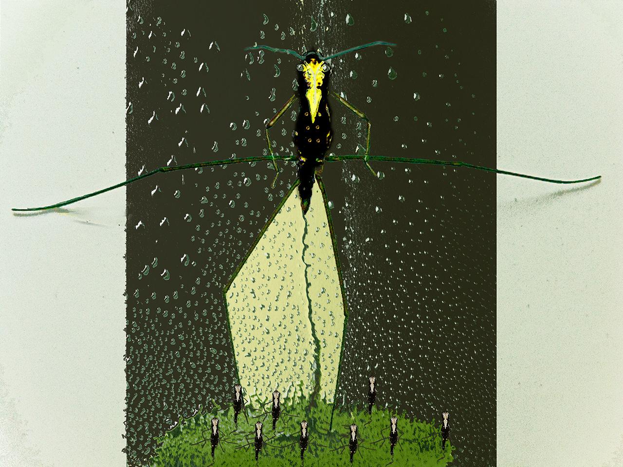 Schule der Wasseräufer, 2011, Inkjet Print
